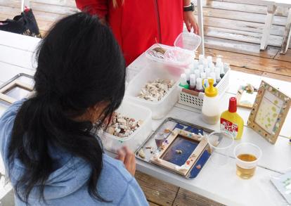 サンゴ礁の生物観察と貝殻フォトフレーム工作パック